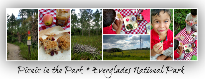 everglades national picnic