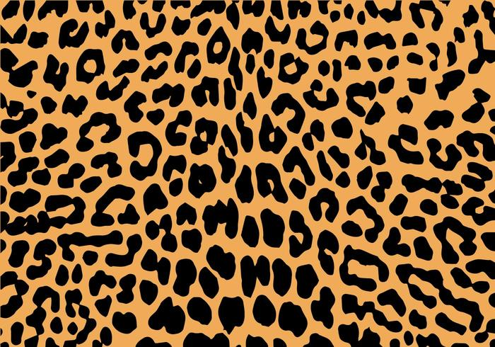 Your Chance to Grab the Best Animal Print in The Market