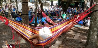 relax roots revival
