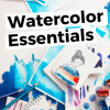 Essential Watercolor Supplies