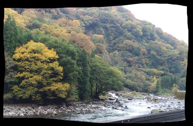 河原と紅葉
