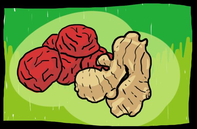 梅干しと生姜