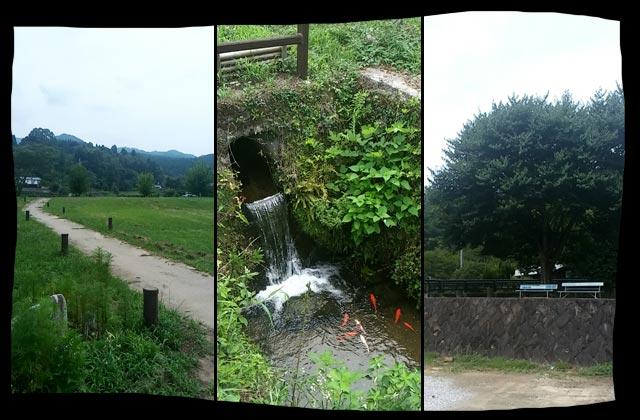 田舎の良い景色