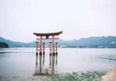 広島県宮島の厳島神社にて 満潮時の鳥居