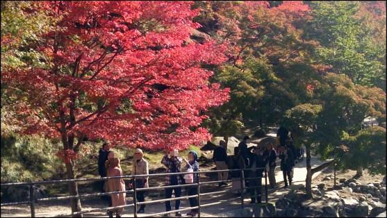 香嵐渓の赤い紅葉と人々