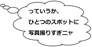 苗木城ミケコメント01