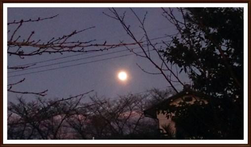 スーパームーン前日に小山から撮影03