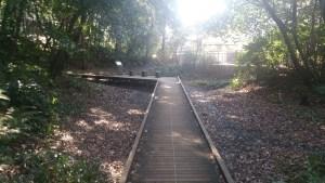 小牧城跡の山頂への道