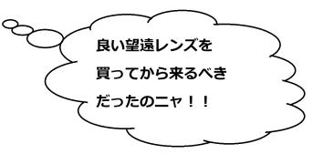 琵琶湖北水鳥公園02のミケコメ01