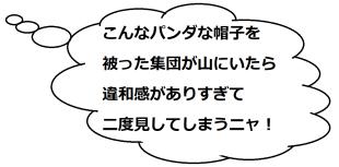 大文字山2のミケコメ01