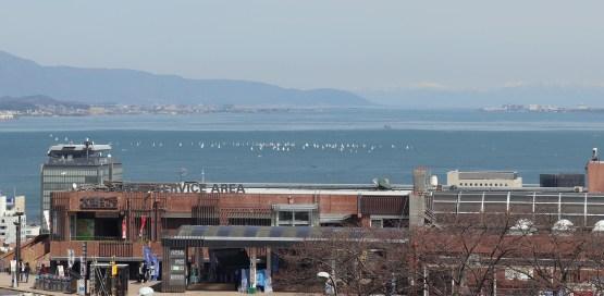 大津SAの展望台から撮影02の拡大してヨット群