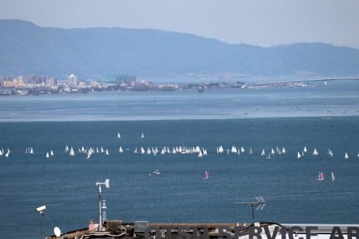 大津SAの展望台から撮影したヨットの群れズームアップ01