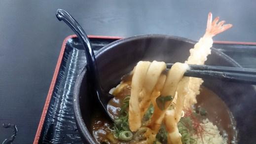 御在所30の天ぷらカレーうどん01