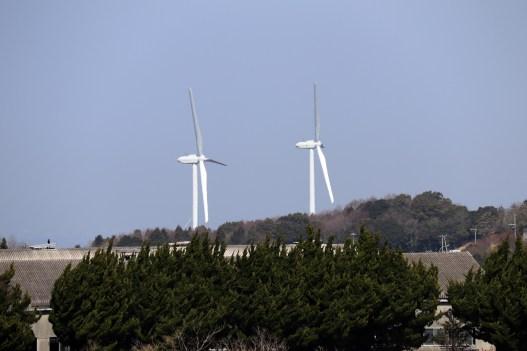 4-3あわじ花の遠くに見える風車2
