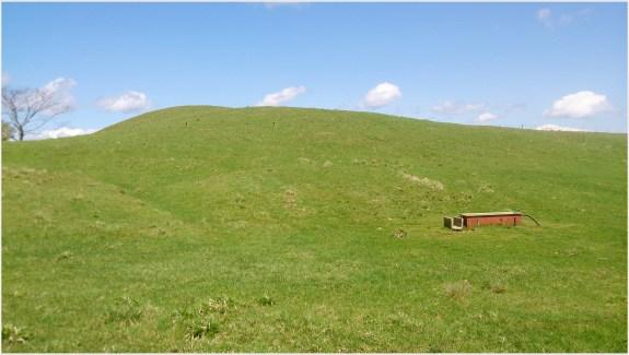 茶臼山牧場1の1