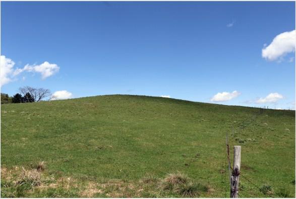 茶臼山牧場1の6