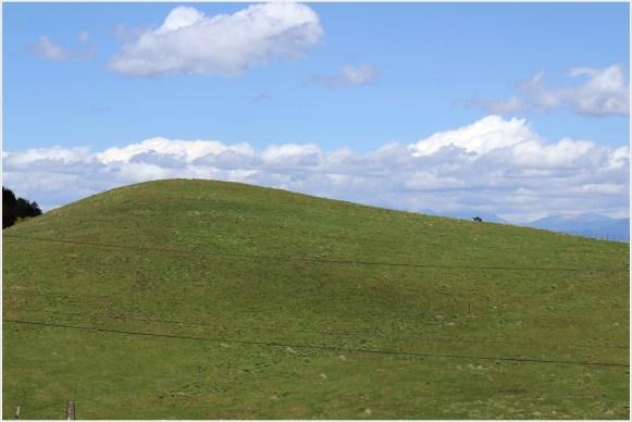 茶臼山牧場1の5