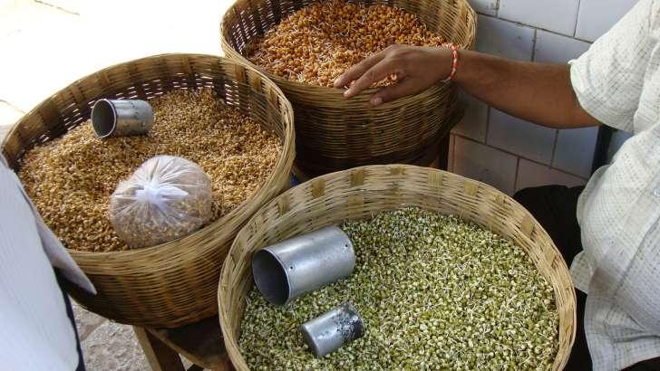 根が出た豆