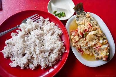 昼食は卵ティラピア。冷めたままなのが残念。小皿の緑色は辛い。70ペソ。