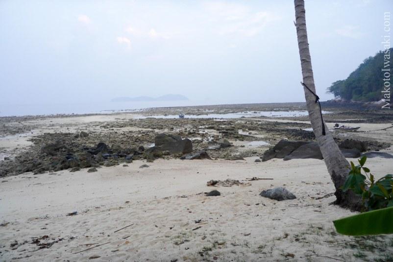 早朝7時頃、干潮で珊瑚も顕になっている。