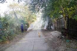 Pai のTha Pai 温泉の近くでは家の前で落葉を集めて燃やしていた