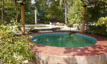Krabi Hot Springs クラビ温泉はクラビから30km南