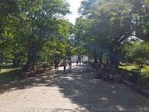 酒安の街 ポンディシェリ散歩