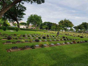 ここから外人墓地