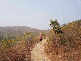 ラジギールの竹林精舎とジャイナの丘ハイキング