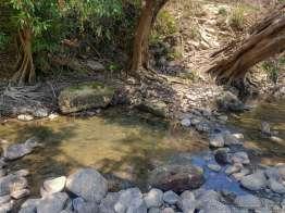 15m離れたところに湯溜まりがあってそこで寝湯できる。浅い。もっと深く掘れそうなものだが。