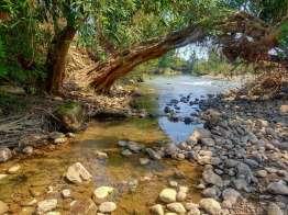 大きな冷水川と合流する。