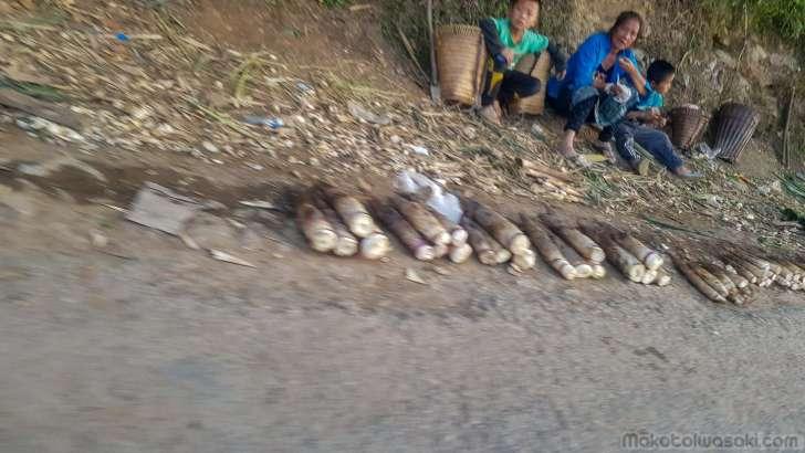 道端の竹の小売り