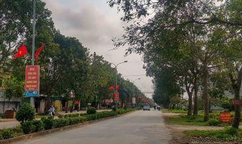 国旗密度世界一のベトナム