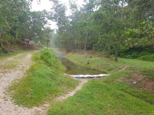 500m 下流にも土嚢湯溜まりがあった。Kapong Hot Spring と名付けられている。ここもいい温度