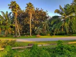 タサトン温泉公園