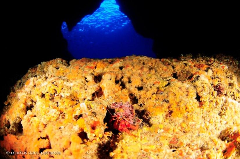 mallorca-north-coast-diving-port-soller-marcos-dario-02