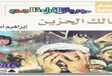Photo of رواية مالك الحزين إبراهيم أصلان PDF