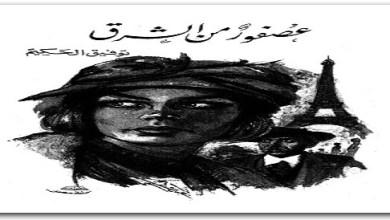 Photo of رواية عصفور من الشرق توفيق الحكيم PDF