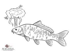 Malvorlage: Der Fisch stinkt vom Kopf. Ein Sprichwort ...