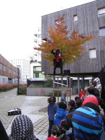Le brigadier chef sur un arbre (du Pré Gauchet) perché