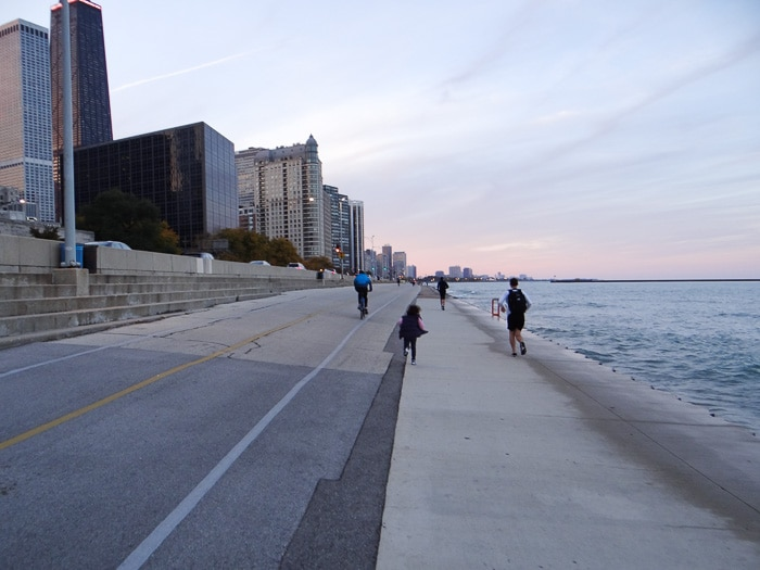 Chicago Skyline (3)
