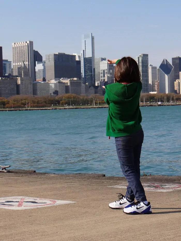 Chicago Skyline (6)