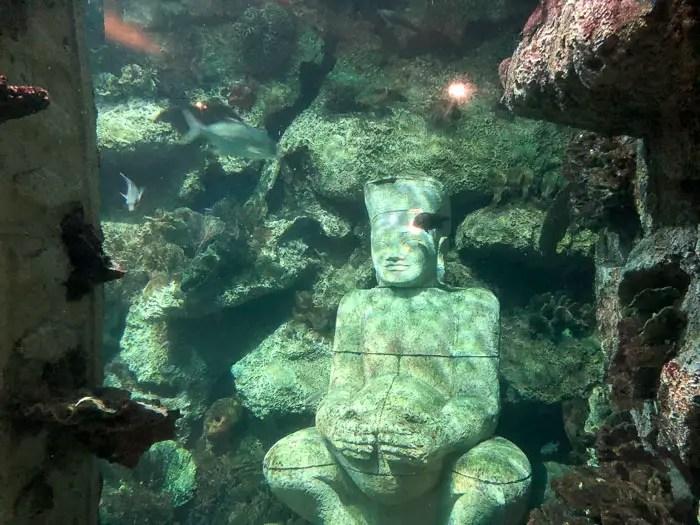Shark Reef at Mandalay Bay