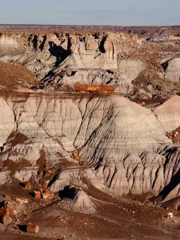 Troncos Petrificados - Petrified Forest National Park