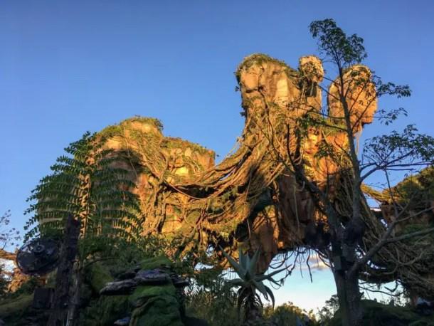 Anoitecer em Disney's Animal Kingdom Pandora