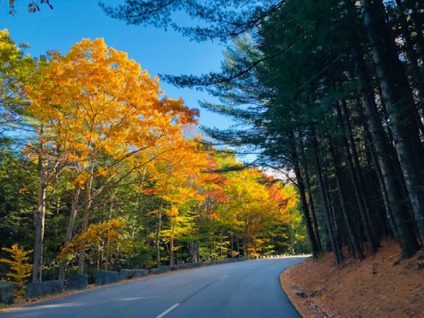 20 Great Places to Take Pictures in New England - Acadia National Park, Bar Harbor, Maine | Travel Cook Tell