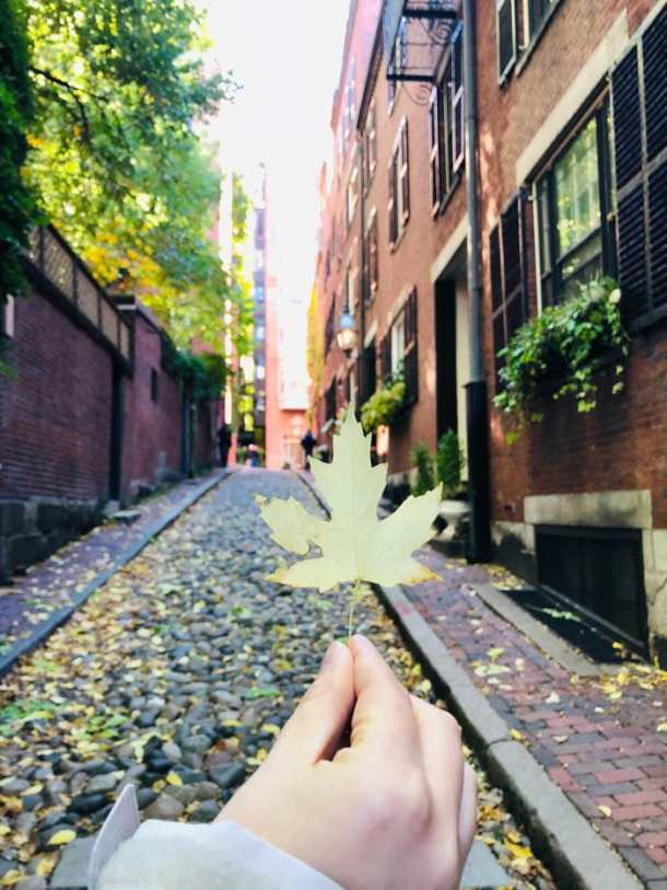 20 Great Places to Take Pictures in New England - Acorn Street, Boston, Massachussets | Travel Cook Tell