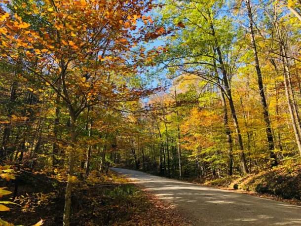 Estrada de terra em Vermont