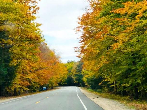 Kancamangus Highway