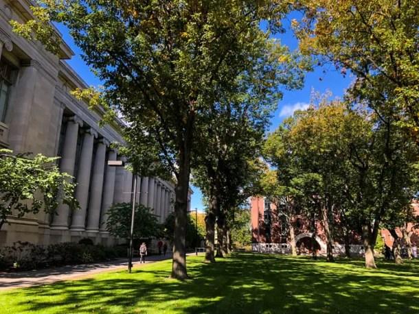 Faculdade de Direito em Harvard